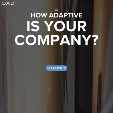 QAD ERP review